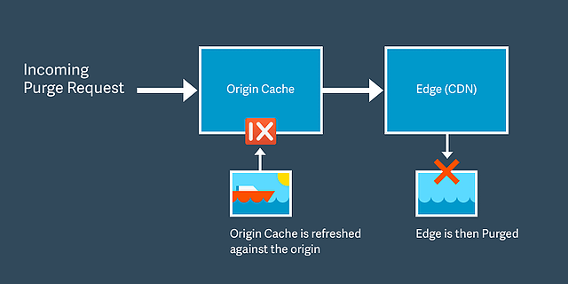 Diagram of purge process