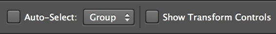 Photoshop auto-select and transform controls