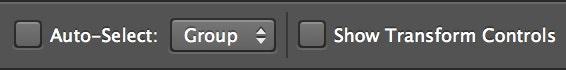 Photoshop auto-select and transform controls
